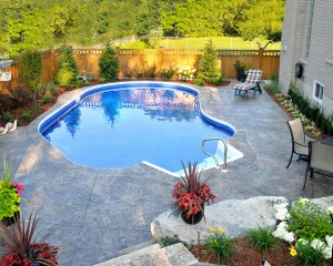 Swimming pool with privacy fence