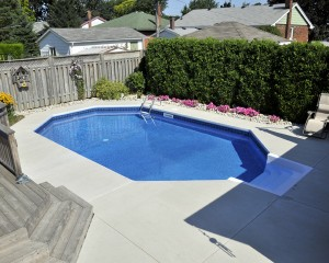 Swimming pool with privacy trees