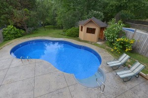 Backyard pool with patio area